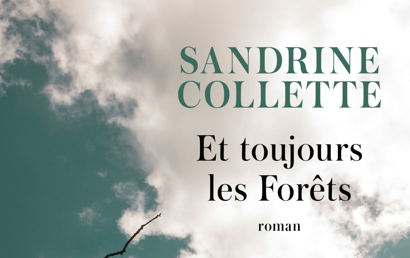 COLLETTE Sandrine